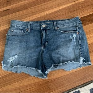 Level 99 distressed jean shorts! Size 29